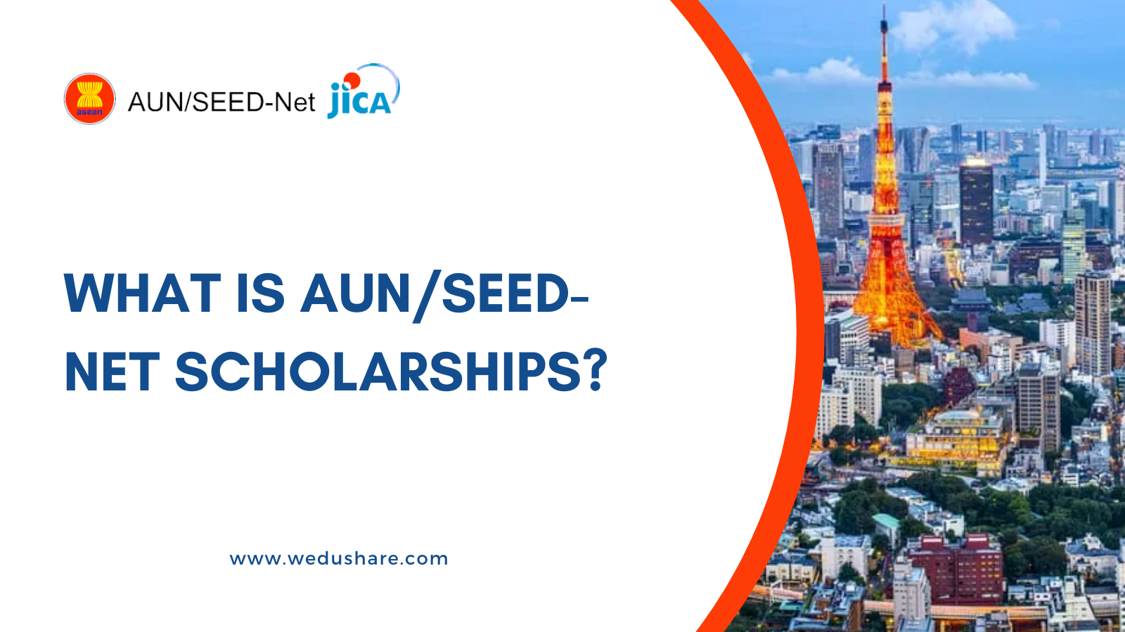 What is AUN/SEED-Net Scholarship?