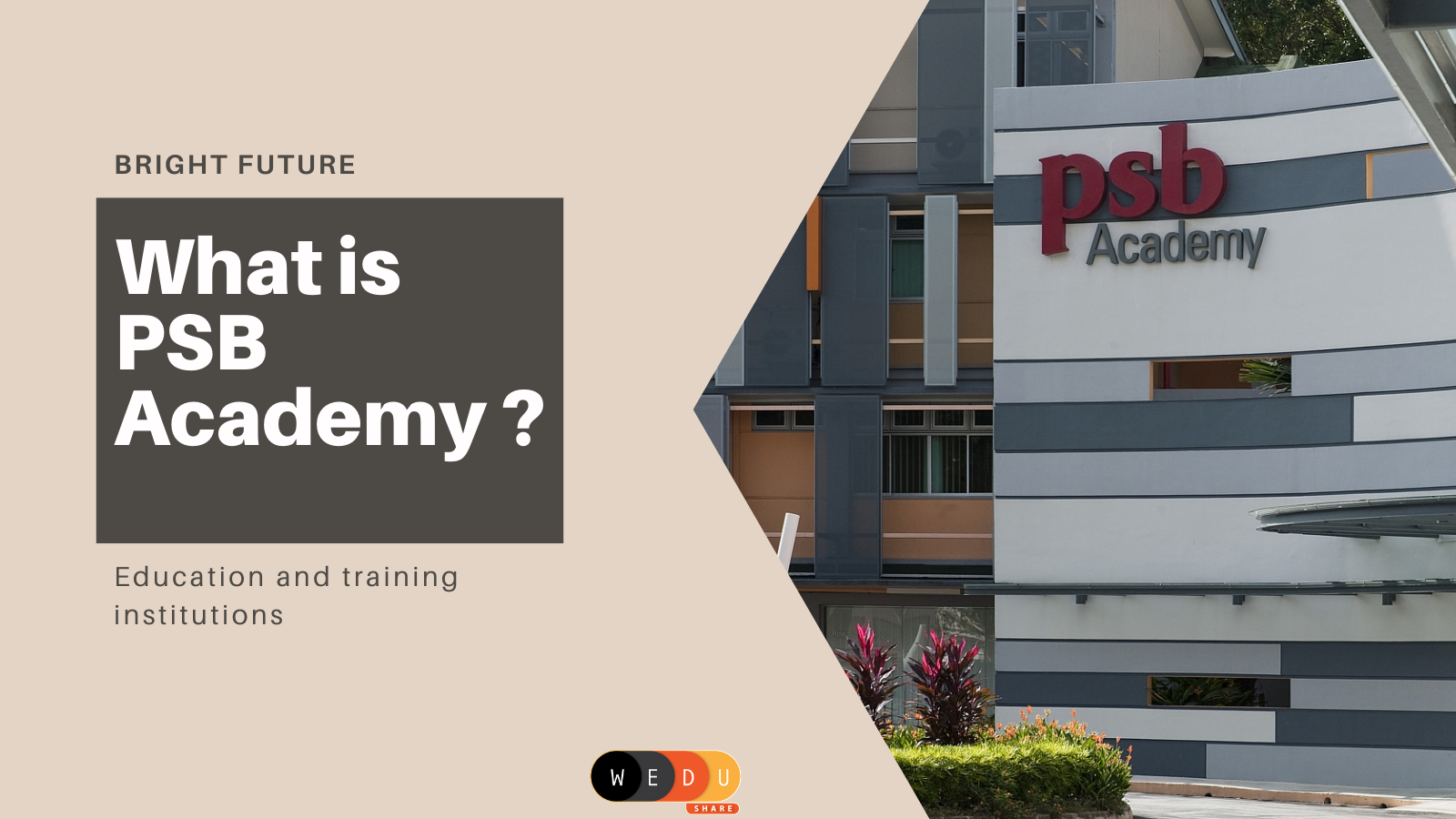 What is PSB Academy?