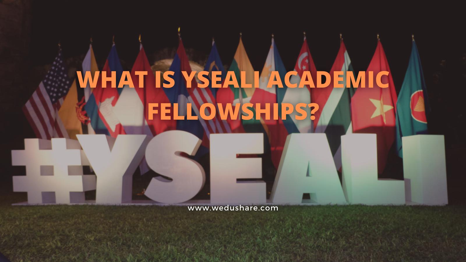 What is YSEALI Academic Fellowships?
